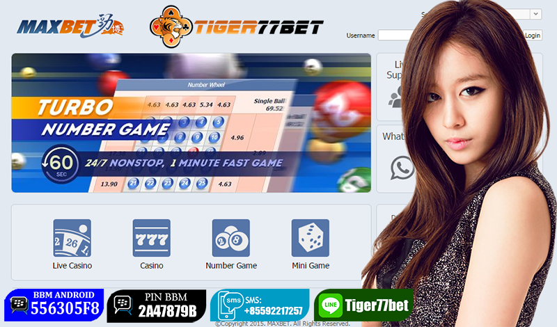 Tips Rumus Menang Main Number Game IBCBET MAXBET Terpercaya